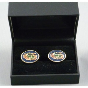 SALAMANDER oval cuff-links
